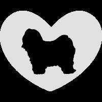 Tibet-Terrier - Tibet Terrier in Herz