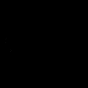 Hocus Pocus - Halloween Spruch - Hexenbesen - Hexe