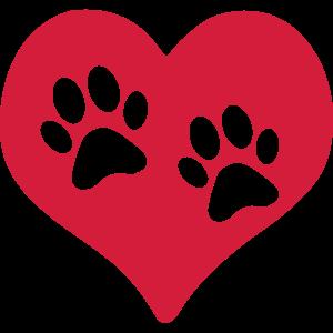 Herz Pfoten Hund Katze Liebe Herrchen Frauchen 1c