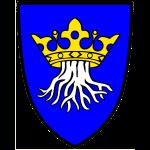 Kronstadt in Siebenbürgen - Wappen der siebenbürgischen Stadt im Burzenland - Transylvania, Transilv