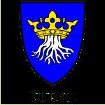 """Kronstadt-Wappen """"Kronstadt"""" - Siebenbürgen, Transylvania, Trasilania. Erdely, Ardeal"""