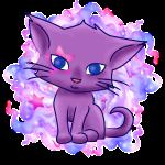 Chat violet