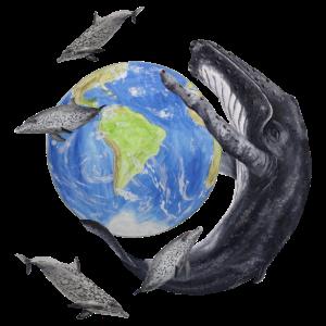 Buckelwal, Fleckendelfine und Erdkugel