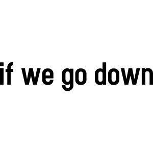 If we go down - lovely partner design