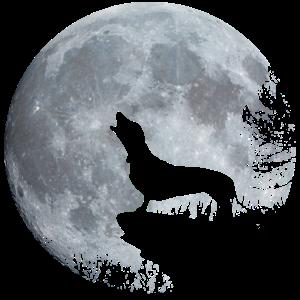 Dackel Mond