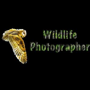 Wildtierfotograf