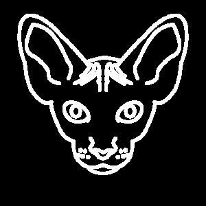 Hässliche Katze