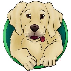 Hunde Portrait - Labrador Welpe