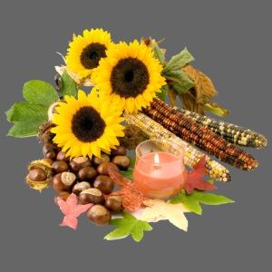 Herbst Kastanie Mais Sonnenblume