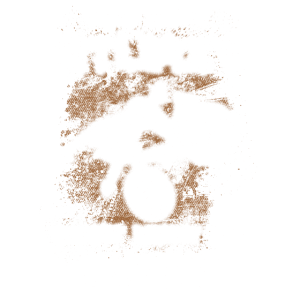 Fahrrad - wer nicht stürzt