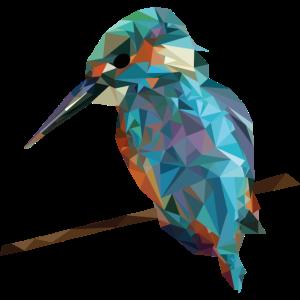 Vogel Dreiecke