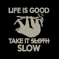 Life is good take it slow - loving sloth