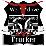 "Truck, LKW, "" we drive what you need"" t-shirt tee"
