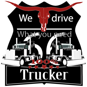 """Truck, LKW, """" we drive what you need"""" t-shirt tee"""