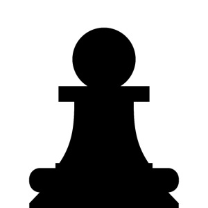 The black pawn