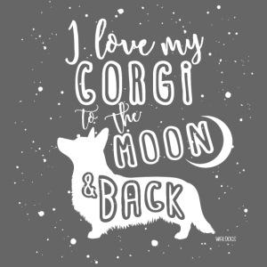 Corgi Moon