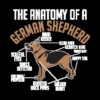 The Anatomy Of A German Shepherd