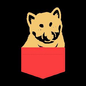 Dog Shiba In A Pocket