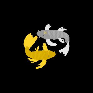 Fische - Fische