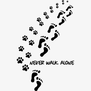 never walk alone dog