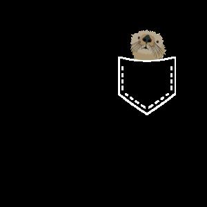 Otter Seeotter Frettchen Marder Wiesel Tiere