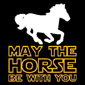 Star und wars Geschenk Pferd
