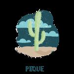 cactus shirt.png