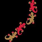 geckos_4_2c_nMnD