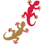 gecko_2_2c_nMnD