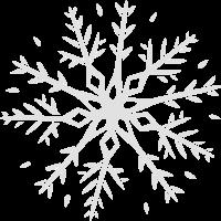 Schneeflocke vectorstock 6725226