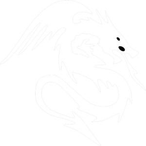 Dragon AR