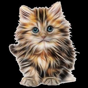 Katze Suess