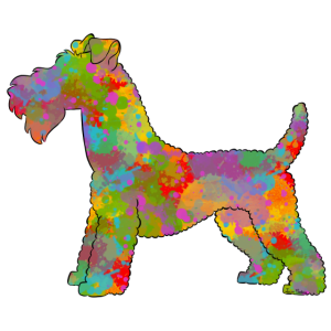 Kerry BlueTerrier