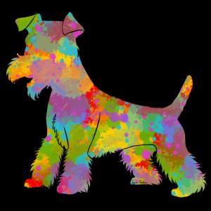 Welsh Terrier Multicolor