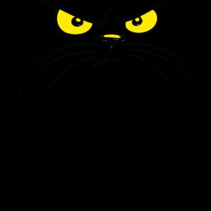 Katze Katzen Katzengesicht böse