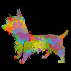 Silky Terrier Multicolor