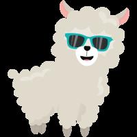 Cool Alpaka mit Sonnenbrille