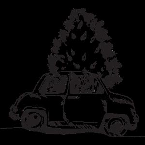 Weihnachtsbaum im Auto