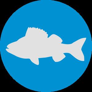 Fisch Angeln Geschenk
