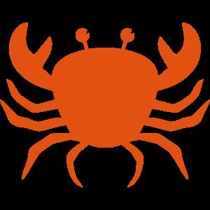Krabbe Krebs Geschenk Sternzeichen Meeresbewohner