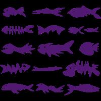 Fische - 1A Fischgräten