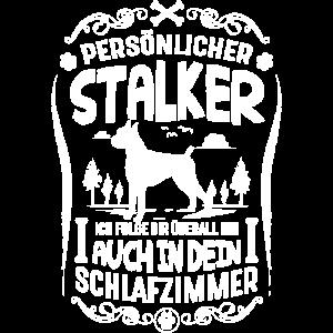 Deutscher Boxer persönlicher Stalker