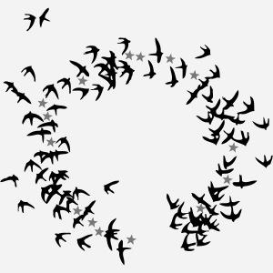 europe birds 2c ed2