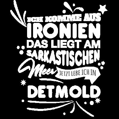 Detmold Fun Geschenk Shirt - Detmold Fun Geschenk Shirt - Weihnachtsgeschenk,Fun,Spaß,Detmold,lustig,Idee,Geschnkidee,schenken,witzig,Stadt,Deutschland,Geburtstag,Geburtstagsgeschenk,Stadt-,cool,Sprüche,Spruch,Mode,Geschenkideen,Geschenk,witzige