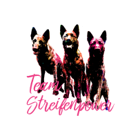 Team Streifenpower