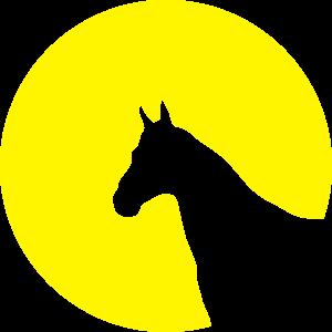 Pferd Pferdekopf Kreis Mond Sonne 1c