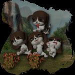 Puppies_2500