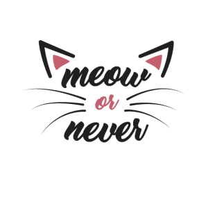 Meow or never Katzen Shirt