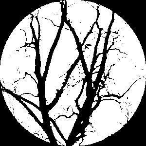 Baum Äste mystischer Wald Vollmond Shirt Motiv