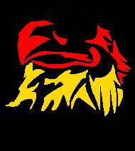 Fan-Shirt: Deutscher Schwarz-Rot-Gold Adler